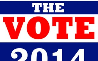 Get Out the Vote 2014
