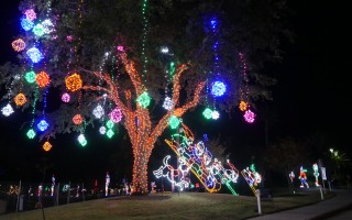 Moody Gardens Festival of Lights 2014. Created by The Signal reporter, Macy Colello.