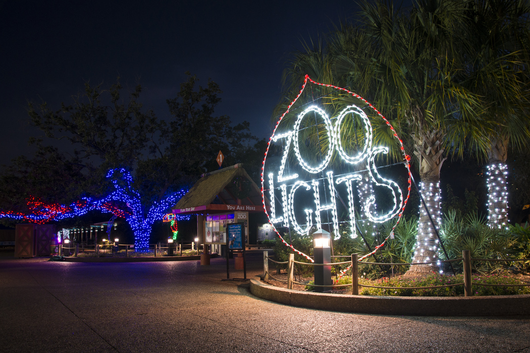 Christmas Lights Strand