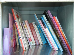 Photo: Contents of a Little Free Library micro library, located in Pearland, TX. Photo credit: Robin Timme.