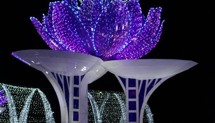 PHOTO: A brightly lit lotus tower displayed at the Magical Winter Lights attraction. Photo by The Signal reporter Bianca Salazar.